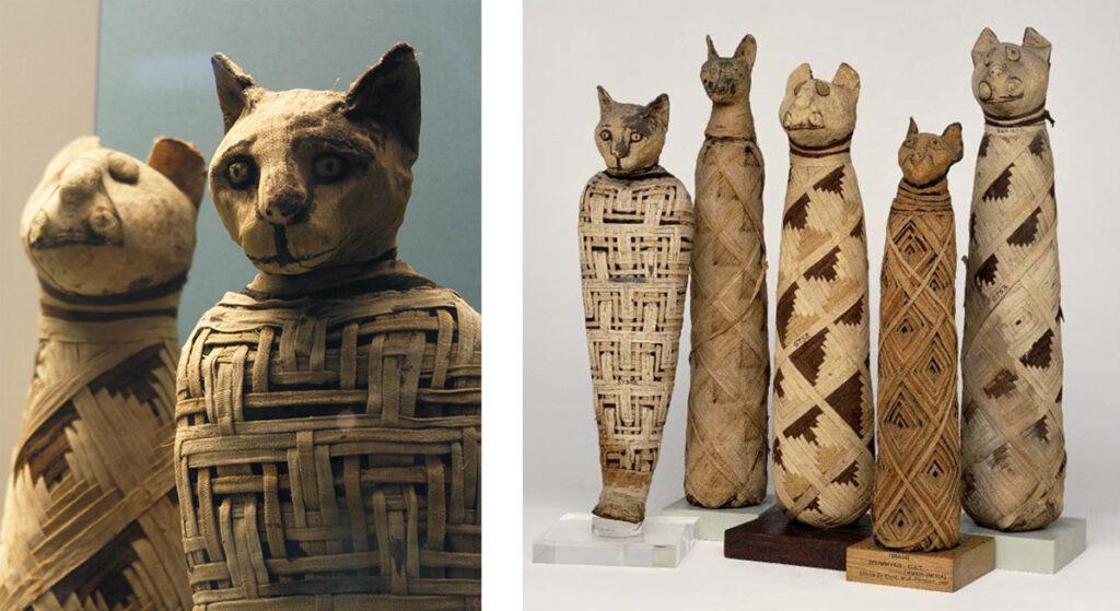 cat_mummies-1024x559