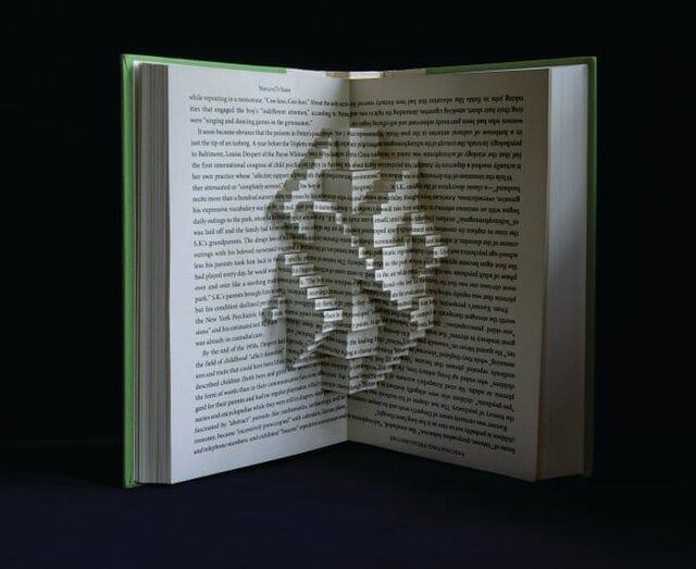 کتابهایی که به مجسمه تبدیل شدند