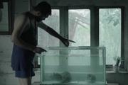 «گوشت خوار» در جشنواره فیلم کوتاه بوسان