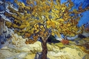 ۸ نقاشی متفاوت از پاییز را تماشا کنید