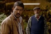 «قصر شیرین» بهترین فیلم جشنواره شانگهای شد/حامد بهداد بهترین بازیگر مرد