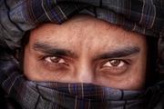 20 فیلم در راه جشنواره فجر